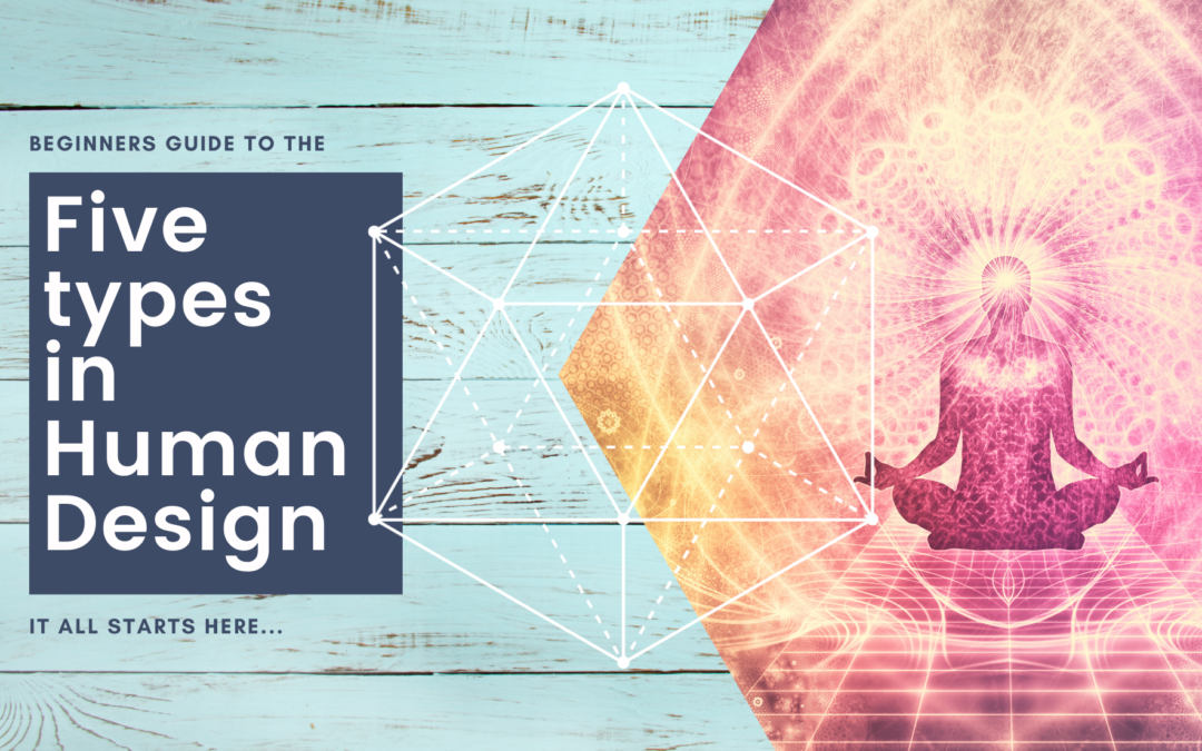 Beginners Guide to the Five Types in Human Design